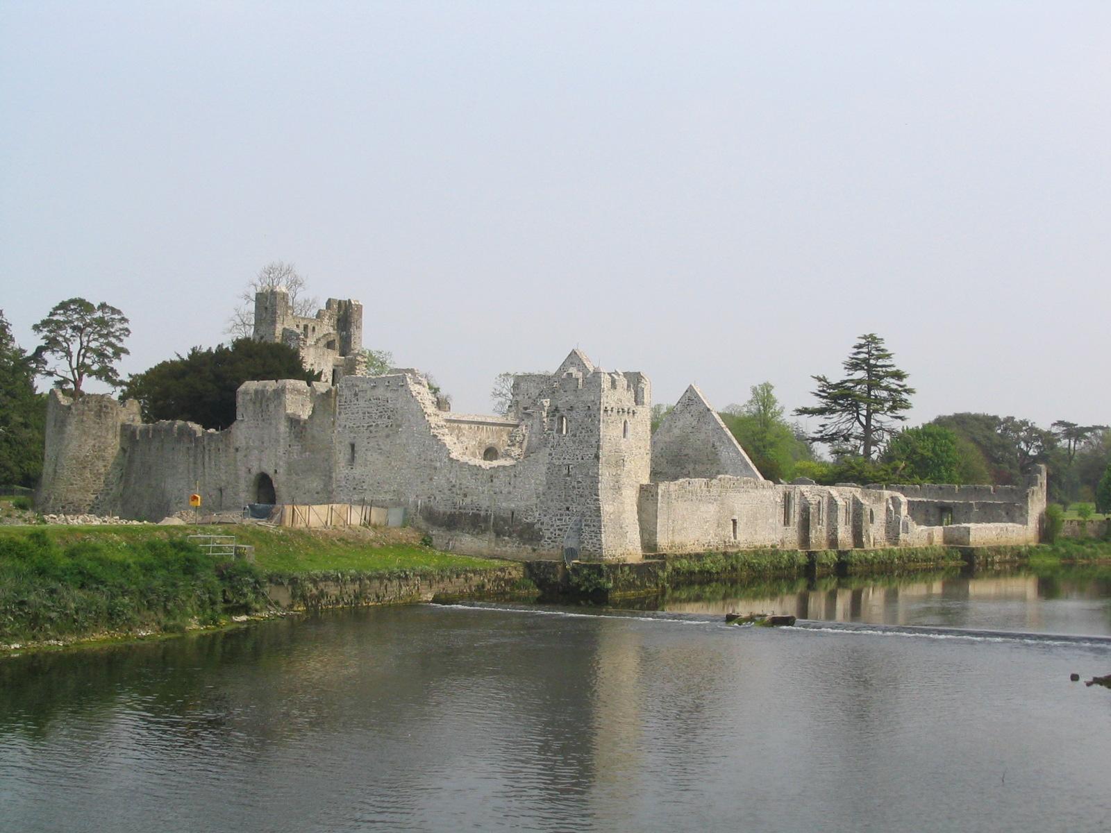 Desmond Castle, Adare